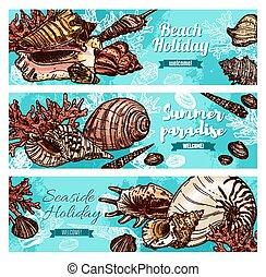 plage, coraux, coquilles, mollusques, été