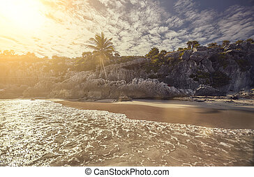 plage, coucher soleil, mexique