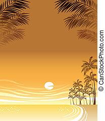 plage, coucher soleil, sur