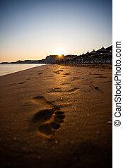 plage, coucher soleil, xi