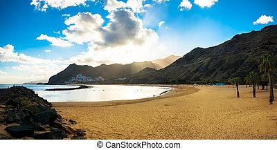 plage, de, tenerife, palmiers, playa, teresitas, las
