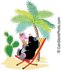 plage, dessin animé, taupe