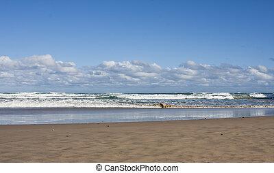 plage, et, vagues, à, nuages, bleu, ciel, jour ensoleillé