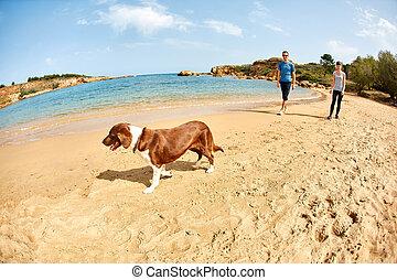 plage, famille