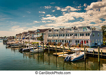 plage, jersey., point, lac, agréable, maisons, nouveau, bateaux, louise, long