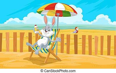 plage, lapin, illustration