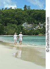 plage, marche couples, vue postérieure, personnes agées