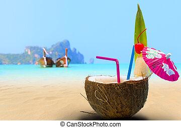 plage, noix coco, phi, île