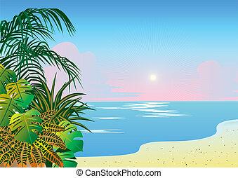 plage., océan