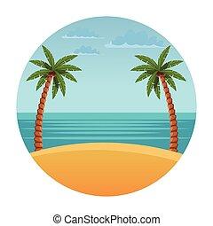 plage, paysage, à, paume