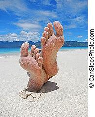 plage, pieds, sablonneux, exotique