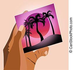 plage, pourpre, femme, mains, tenue, soleil, ciel, arbres, image, paume