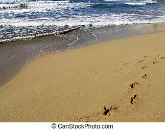 plage, promenade