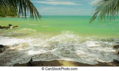 plage, ressac, phuket ile, arbres, leur, shadows., paume, thaïlande