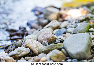 plage, rocheux