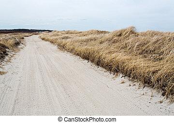 plage, route