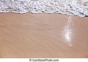 plage sable, fond, vague
