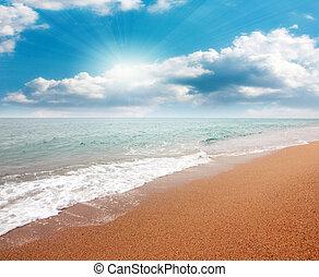 plage, sablonneux