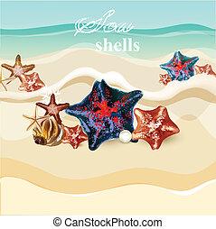 plage, starfishes, fond