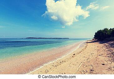plage, sur, gili