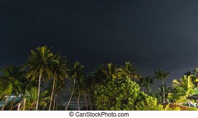 plage, temps, orage, nuit, défaillance, paumes, sur
