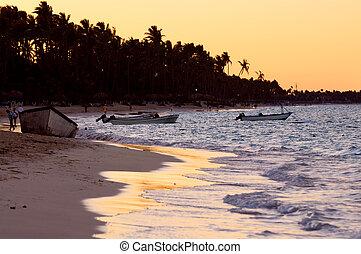 plage tropicale, à, coucher soleil