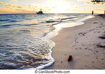plage tropicale, à, levers de soleil