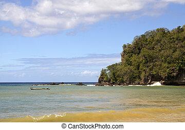 plage tropicale, antilles