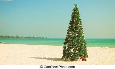 plage tropicale, arbre, noël