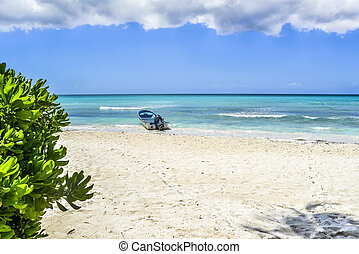 plage tropicale, bateau