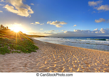 plage tropicale, coucher soleil, à, oneloa, plage, maui, hawaï