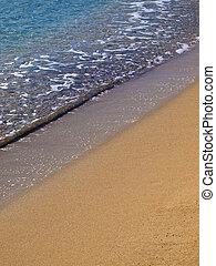 plage tropicale, détail