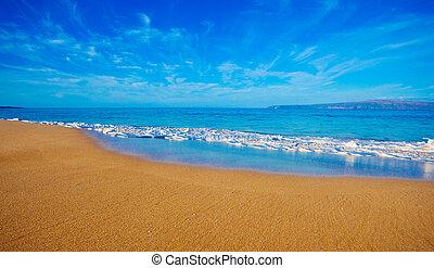 plage tropicale, hawaï