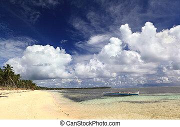 plage tropicale, philippin, pacifique