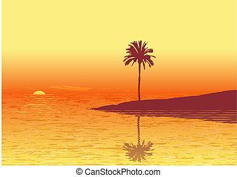 plage, tropique