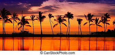 plage, voyage, -, arbres, coucher soleil, paradis, paume, bannière