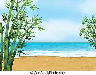 plage, vue