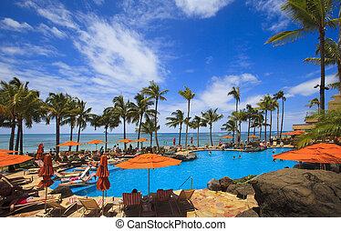 plage, waikiki, hawaï, piscine, natation