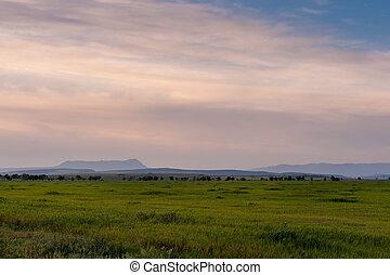 Plain landscape