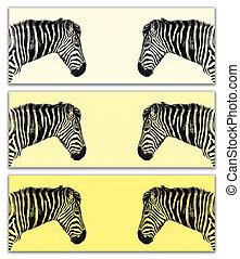 Plains Zebra triptych in yellow tones - Zebra triptych....