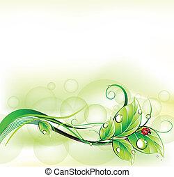 plama, zielone tło, z, ladybirth., wektor