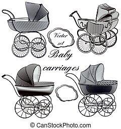 plams, style, bébé, gravé, main, dessiné
