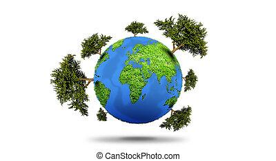 planète, arbre