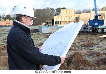 plan, examiner, ouvrier construction