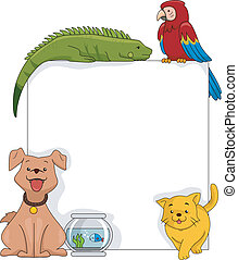 planche, animaux familiers