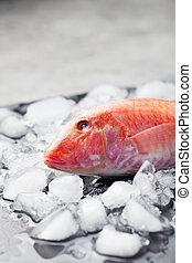 planche, pierre, cubes, fish, noir, glace, mullet rouge