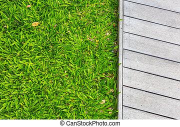 plancher, printemps, bois, vert, frais, herbe