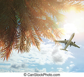 plane and Coconut palm trees and blue sky with sun light and clouds. Happy holiday and tropical resort background