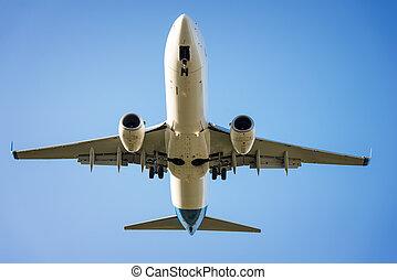 plane flies in the sky
