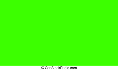 Plane Flying with Chroma Key - Plane flies with green screen...